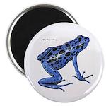 Blue Poison Frog Magnet