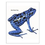 Blue Poison Frog Small Poster