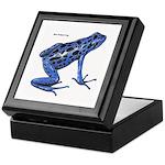 Blue Poison Frog Keepsake Box