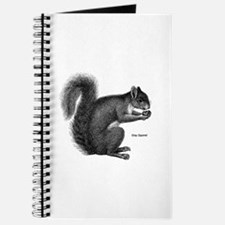 Gray Squirrel Journal