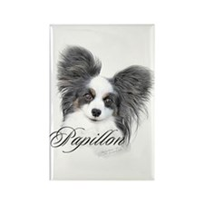 Papillon Headstudy2 Rectangle Magnet