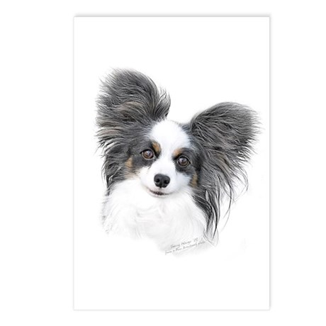 Papillon Headstudy Postcards (Package of 8)