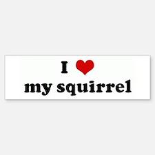 I Love my squirrel Bumper Bumper Bumper Sticker