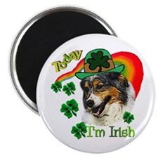 "St Pats Australian Shepherd 2.25"" Magnet (10 pack)"