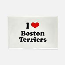 I Love Boston Terriers Rectangle Magnet