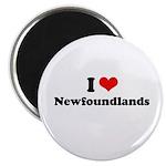 I Love Newfoundlands Magnet