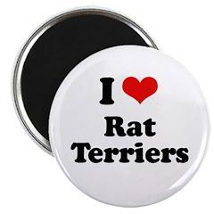 I Love Rat Terriers 2.25