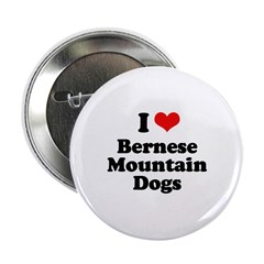 I Love Bernese Mountain Dogs 2.25