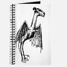 Jersey Devil Journal
