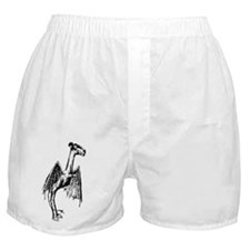 Jersey Devil Boxer Shorts