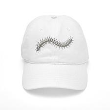 Great Sea-Centipede Baseball Cap