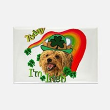 St. Patty Yorkie Rectangle Magnet (10 pack)