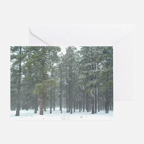 Winter in Arizona 2 Greeting Card