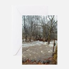 Flooding after the storm Greeting Card