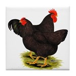 Rhode Island Red Pair Tile Coaster