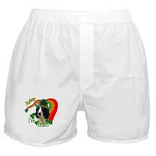 St Pats Springer Spaniel Boxer Shorts