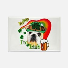 Paddys English Bulldog Rectangle Magnet (10 pack)