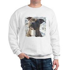 Brains, Beauty & Brawn That's Sweatshirt
