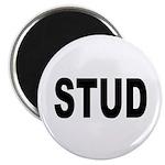 Stud Magnet