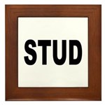 Stud Framed Tile