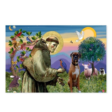 St Francis / Boxer Postcards (Package of 8)