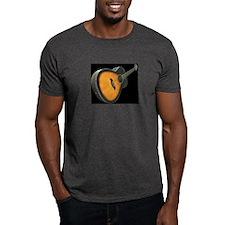 accoustic guitar 2 T-Shirt