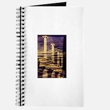 Pompeii Journal