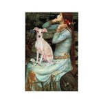 Ophelia / Italian Greyhound Rectangle Magnet (10 p