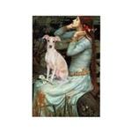 Ophelia / Italian Greyhound Rectangle Magnet