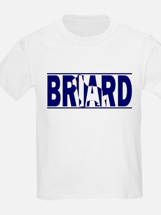 Hidden Briard T-Shirt