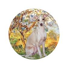 "Spring / Italian Greyhound 3.5"" Button"