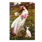 Windflowers / Ital Greyhound Postcards (Package of