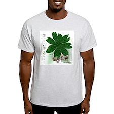 Morels & May Apples Ash Grey T-Shirt