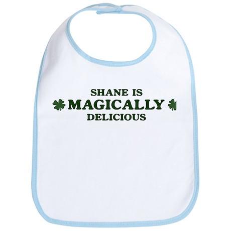 Shane is delicious Bib