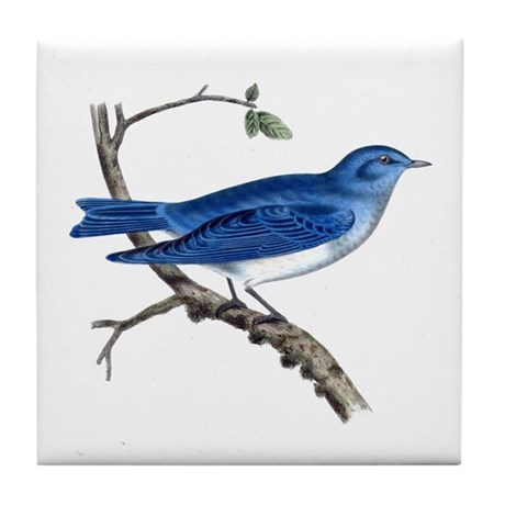 Arctic Bluebird Tile Coaster