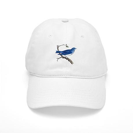 Arctic Bluebird Cap