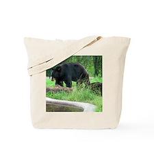 pair Tote Bag