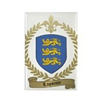 LAPOINTE Family Crest Rectangle Magnet