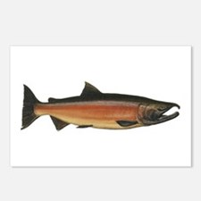 Coho Salmon Postcards (Package of 8)