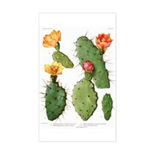 Blooming Cacti #1 Rectangle Decal
