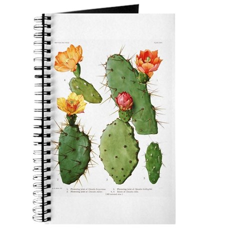 Blooming Cacti #1 Journal