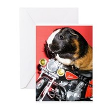 Funny Bike Greeting Cards (Pk of 10)