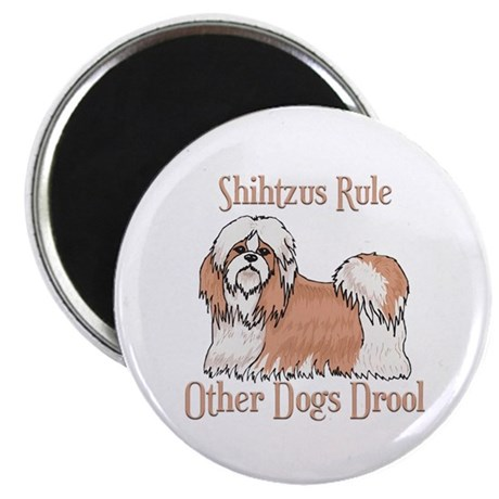 """Shihtzus Rule Other Dogs Drool 2.25"""" Magnet (10 pa"""