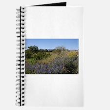 Arizona Desert In Springtime Journal