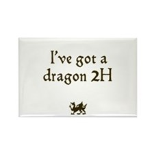 ive got a dragon 2H Rectangle Magnet