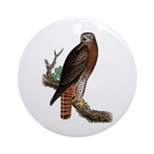 Red-tailed Hawk Ornament (Round)