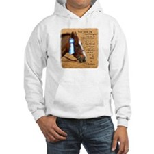All For A Ribbon Horse Hoodie