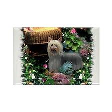 Silky Terrier Art Rectangle Magnet (100 pack)