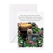 Silky Terrier Art Greeting Card