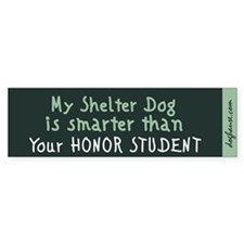 Shelter Dog Bumper Sticker (teal)